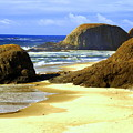 Oregon Coast 18 by Marty Koch