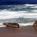 Oregon Coast 6 by Marty Koch