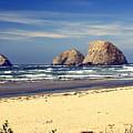 Oregon Coast 7 by Marty Koch