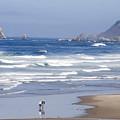 Oregon Coast by Elvira Butler