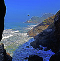 Oregon Coast From Sea Lion Caves by Rich Walter