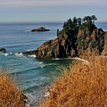 Oregon Coast by Marilyn Smith