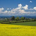 Oregon Countryside by Idaho Scenic Images Linda Lantzy