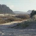 Oregon Dunes 5 by Eike Kistenmacher
