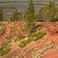 Oregon Landscape - Red Crater by Carol Groenen