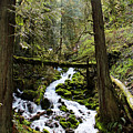 Oregon River by Sierra Vance