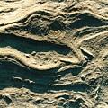 Oregon Sandstone by Ron Potter