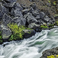 Oregon's Dillon Falls by Nancy Marie Ricketts