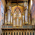 Organ Jewel by Jenny Setchell