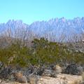 Orgon Mountains by Randy  Rhodes