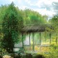 Orient - Bridge - Chinese Bridge  by Mike Savad