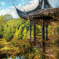 Orient - From A Chinese Fairytale by Mike Savad