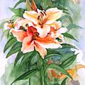 Oriental Lilies by Nancy Watson