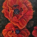 Oriental Poppys  by Barbara O'Toole