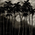 Original Moonlit Palm Trees  by Larry Lehman