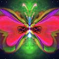 Oriole Rainyjewel by Raymel Garcia