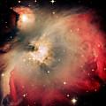 Orion Nebula Redux by Jim DeLillo