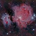 Orion Nubula by Dale J Martin