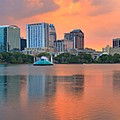 Orlando Skyscrapers And Palm Trees by Adam Jewell