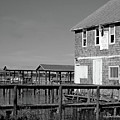 Ormond Yacht Club Black And White by DigiArt Diaries by Vicky B Fuller