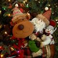 Ornament 234 by Joyce StJames