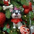 Ornament 61 by Joyce StJames
