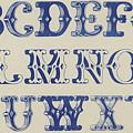 Ornamental Font by English School