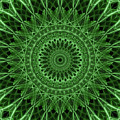 Ornamented Mandala In Green Tones by Jaroslaw Blaminsky