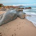Orri Beach by Daniele Fanni