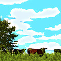 Osage County Cows by Susan Vineyard