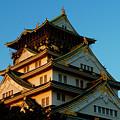 Osaka Castle Near Twilight by Baato