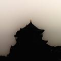 Osakajou Yinyang by Baato