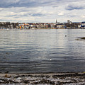 Oslo Waterfront by Suzanne Luft