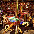 Ostrich Carousel Ride by Garry Gay