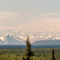 Other Views Of Alaska's Mount Denali by Charles McCleanon