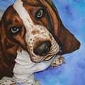 Otis The Basset Hound by JoLyn Holladay