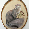 Otter - Growing Curiosity by Brandy Woods