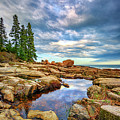 Otter Point Reflections by Rick Berk