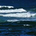 Our Beautiful Ocean by Kaye Menner