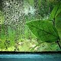 Out My Window by Laura Regier