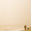 Out Of The Mist by Steve Karol