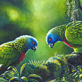 Out On A Limb - St. Lucia Parrots by Christopher Cox
