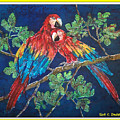 Out On A Limb- Macaws Parrots - Bordered by Sue Duda
