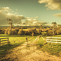 Outback Country Paddock by Jorgo Photography - Wall Art Gallery
