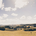 Outback Ridgley In Scenic Tasmania, Australia by Jorgo Photography - Wall Art Gallery