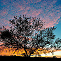 Outback Sunset Pano by Ray Warren