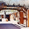 Santa Fe Branches Art At The Shops by Cherie Cokeley