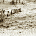 Outer Banks Beach Sand Fence  by Randy Steele
