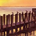Outer Banks by Marsha Elliott