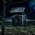 Outhouse In The Moonlight With Flying Crows by Randall Nyhof